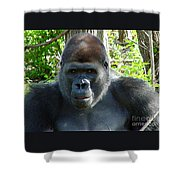 Gorilla Headshot Shower Curtain
