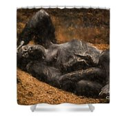 Gorilla - Painterly Shower Curtain