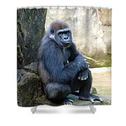 Gorilla Smile Shower Curtain