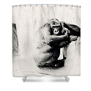 Gorilla Unamused Shower Curtain