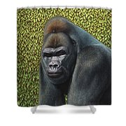 Gorilla With A Hedge Shower Curtain by James W Johnson