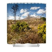 Gorse Bush On Mountain Approach Shower Curtain