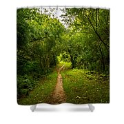 Gosnell Big Woods Trail Shower Curtain