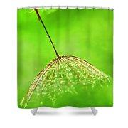 Gossamer Umbrellas Shower Curtain