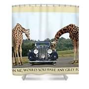 Got Grey Poupon Shower Curtain