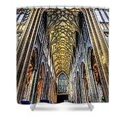 Gothic Architecture Shower Curtain by Adrian Evans