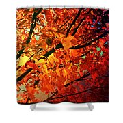 Gothic Autumn Leaves Shower Curtain