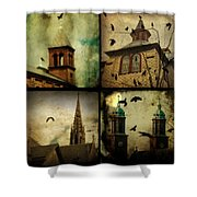 Gothic Churches And Crows Shower Curtain