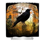 Gothic Fish Eye Shower Curtain