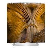 Gothic Impression Shower Curtain