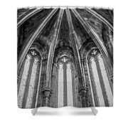 Gothic Monastery Shower Curtain