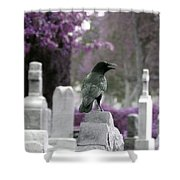 Gothic Purple Shower Curtain