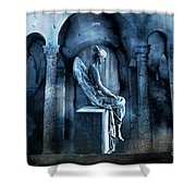 Gothic Surreal Angel In Mourning With Ravens Shower Curtain