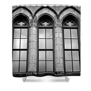 Gothic Windows - Black And White Shower Curtain