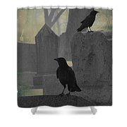 Gothic Winter Blackbirds Shower Curtain