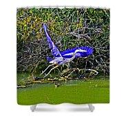Gr8 Heron Flight Shower Curtain