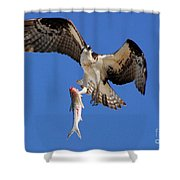 Grace In The Sky Shower Curtain