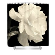 Grace Of Creation Shower Curtain