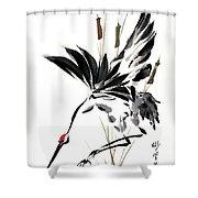 Grace Of Descent Shower Curtain