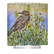 Grackle In Flowers Shower Curtain