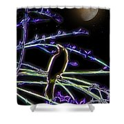 Grackle In The Willow Tree Shower Curtain