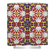 Graffito Kaleidoscope 40 Shower Curtain