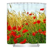 Grain And Poppy Field Shower Curtain