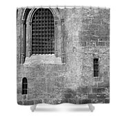 Granada Cathedral Monochrome Shower Curtain