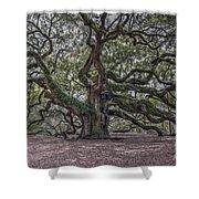 Grand Angel Oak Tree Shower Curtain