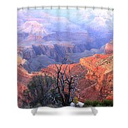 Grand Canyon 67 Shower Curtain