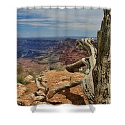Grand Canyon And Dead Tree 1 Shower Curtain