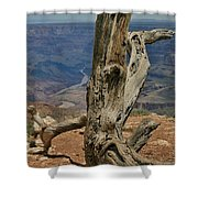 Grand Canyon And Dead Tree 2  Shower Curtain