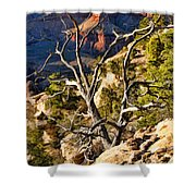 Grand Canyon Branches Shower Curtain