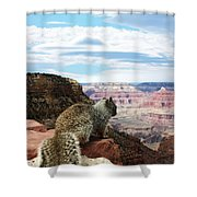 Grand Canyon Squirrel Shower Curtain