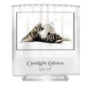 Grand Kitty Cuteness Miss Tilly Poster Shower Curtain by Andee Design