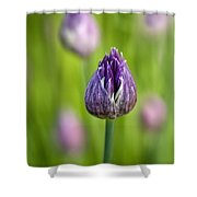 Grand Opening Shower Curtain