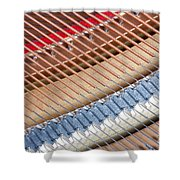 Grand Piano Strings Shower Curtain