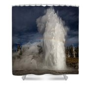 Grand Show Shower Curtain