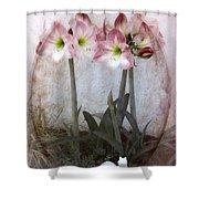 Grandmas Amaryllis Garden Shower Curtain