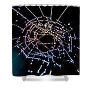 Grandmother Spider's Dream Catcher Shower Curtain