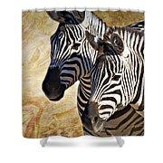 Grant's Zebras_b1 Shower Curtain