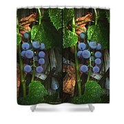 Grapes On The Vine - Gently Cross Your Eyes And Focus On The Middle Image Shower Curtain