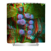 Grapes On The Vine - Use Red-cyan Filtered 3d Glasses Shower Curtain