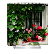 Grapevines And Geraniums Around A Window Shower Curtain