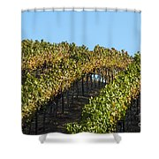 Grapevines Shower Curtain