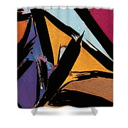 Graphite From India Shower Curtain