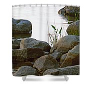 Grass And Rocks Shower Curtain