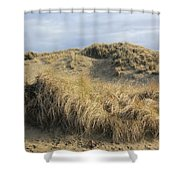 Grass And Sand Dunes Shower Curtain