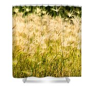 Grass Feathers Shower Curtain