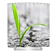 Grass In Asphalt Shower Curtain by Elena Elisseeva